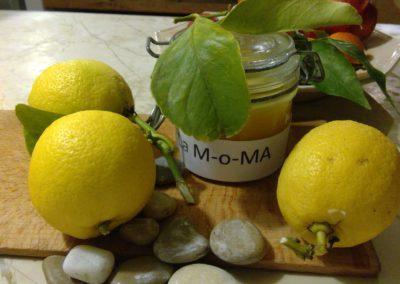 citron moma